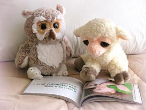 Stuffed Animals Reading